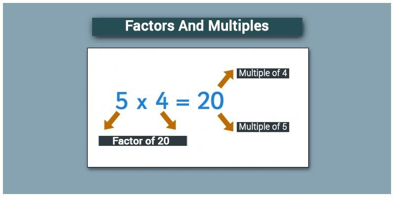 Difference between Factors and Multiples
