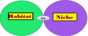 Difference between Habitat and Niche