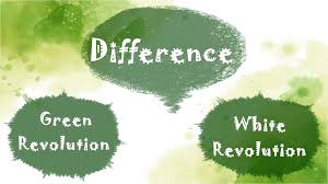 Difference Between Green and White Revolution