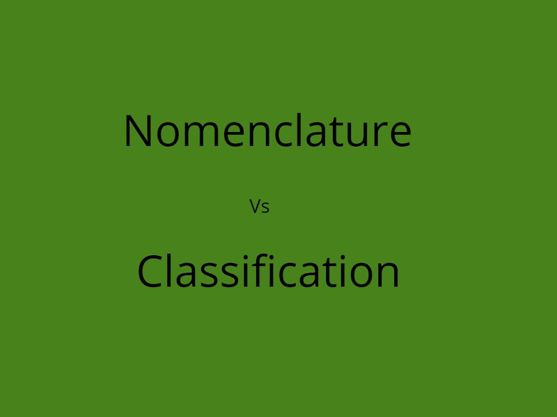 Difference Between Nomenclature and Classification