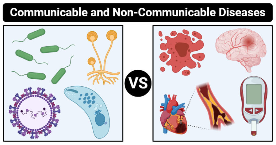 Difference Between Communicable and Non-Communicable Disease